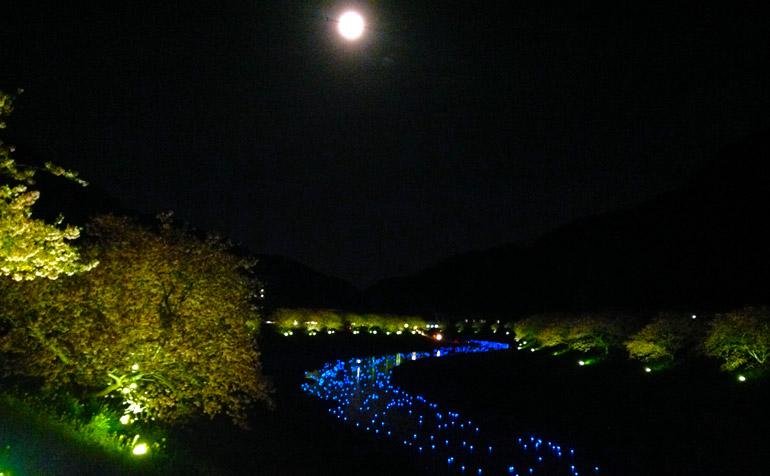 夜桜といのり星