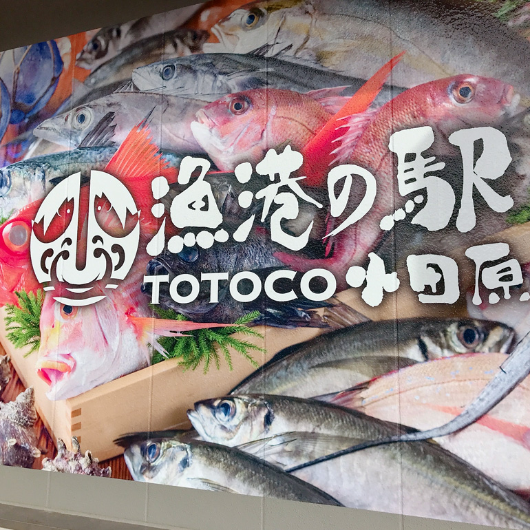 TOTOCO 小田原